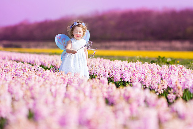 Sweet toddler girl in fairy costume on a flower field